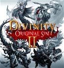 Divinity: Orignal Sin 2 game image